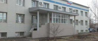 Чапаевский городской суд Самарской области 1